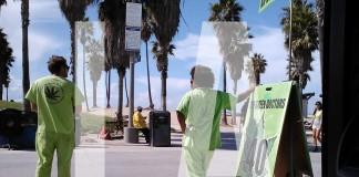 medyczna marihuana california