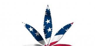 legalizacja w stanach zjednoczonych
