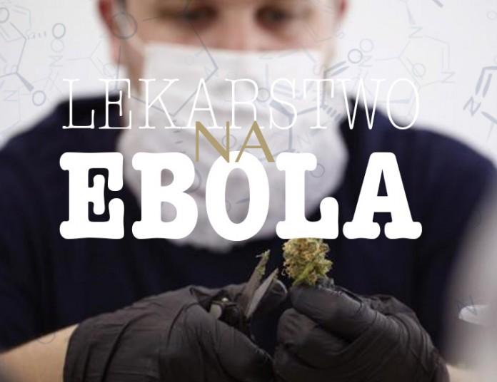 ebola i marihuana