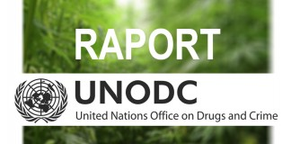 raport unodc marihuana 2014