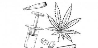 prawo holenderskie marihuana heroina