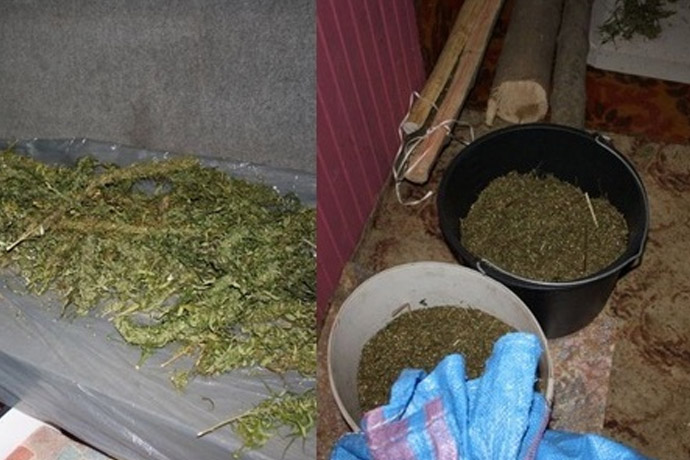 sandomierz 19 kg marihuany