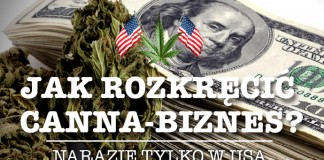 Biznes z marihuaną