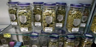 sklepy z marihuana