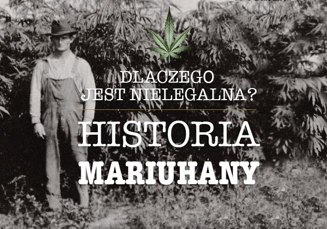 historia marihuany w usa