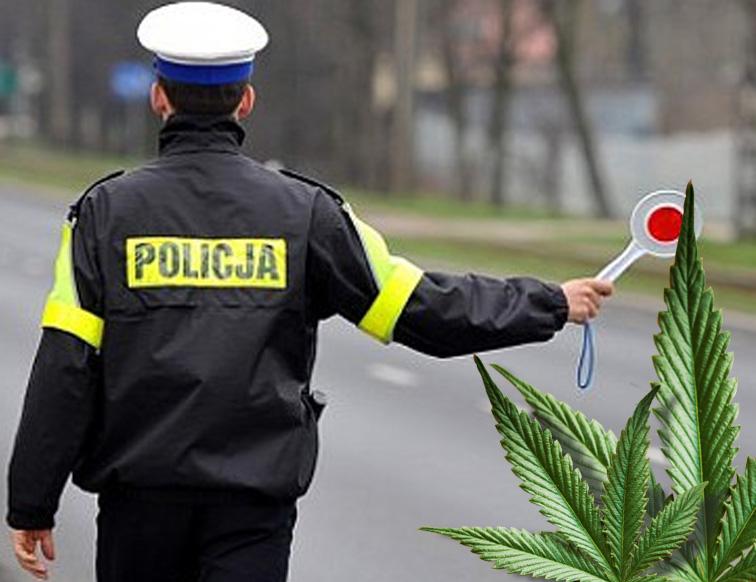 prowadzenie samochodu po marihuanie