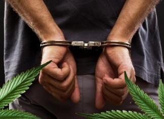 posiadanie marihuany kara
