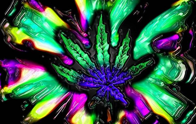 szamani wykorzystuja marihuane