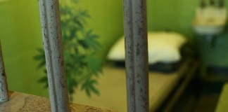 Legalne zioło w więzieniu