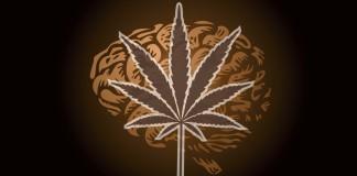 marihuana będzie leczyć padaczkę w Polsce