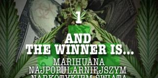 Marihuana wygrywa z innymi narkotykami świata
