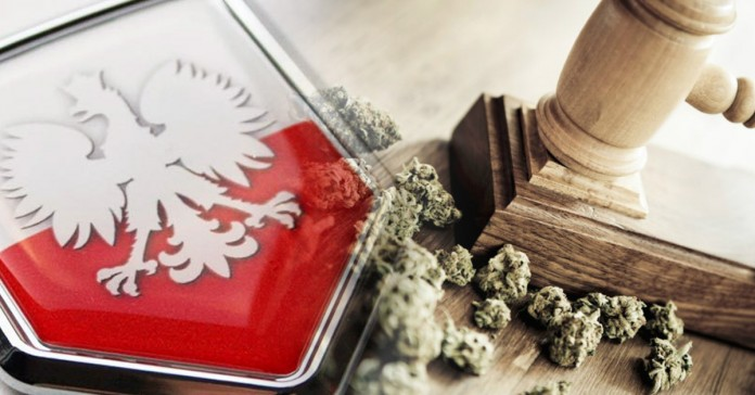 ciąg dalszy debaty o legalizacji