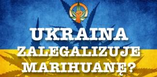 Czy legalizacja marihuany uratuje ukraińską gospodarkę?