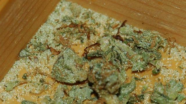 Marihuana z domieszką szkła