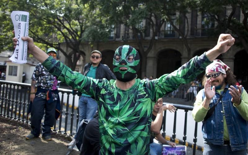 Meksykańska konstytucja kontra marihuana