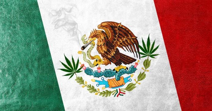 Legalizacja w Meksyku