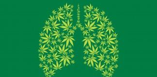 Wpływ marihuany na płuca