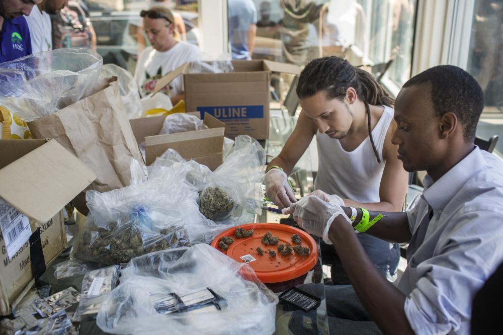 Weed The People - pakowanie próbek