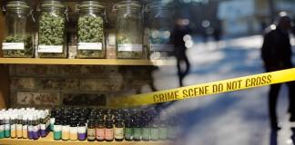 Legalizacja marihuany a przestępczość