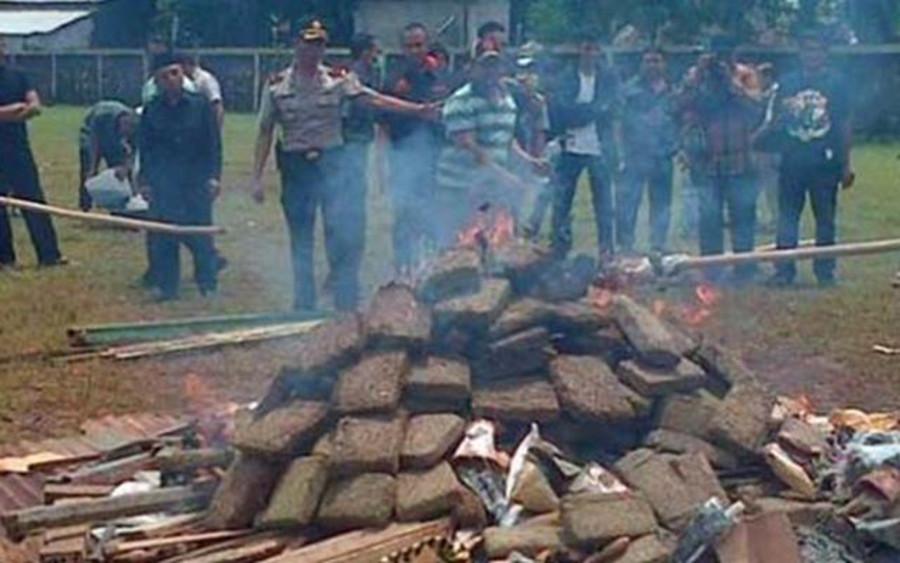 Indyjska policja upala pół miasta