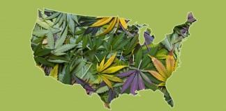 Stany legalizacja