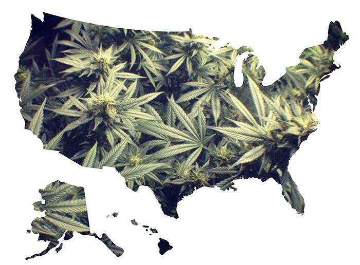 marihuana-w-USA