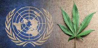 ONZ debata o narkotykach