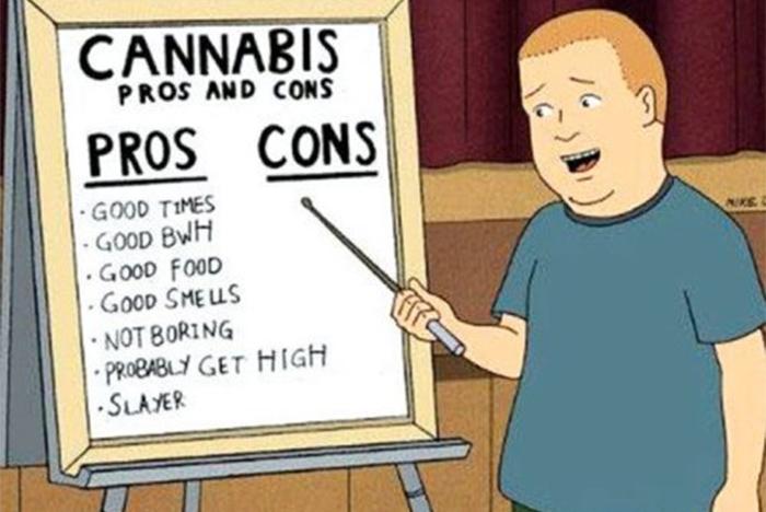 bobby kontra wapniaki a legalizacja