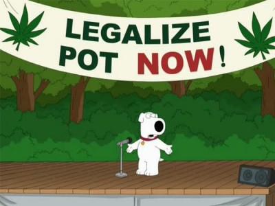 family guy a legalizacja