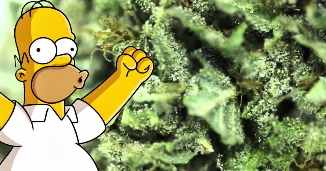 kreskówki popierające legalizację