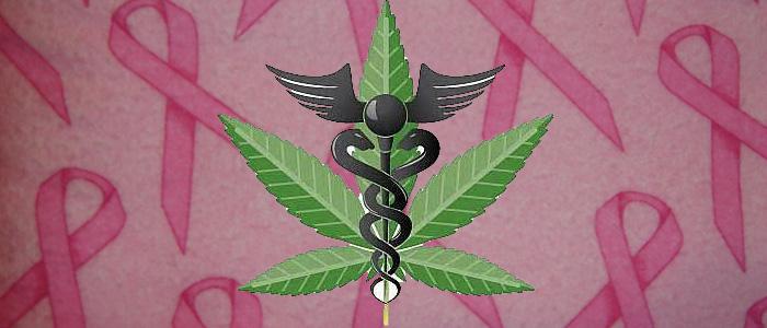marihuana pomaga walczyc z rakiem piersi