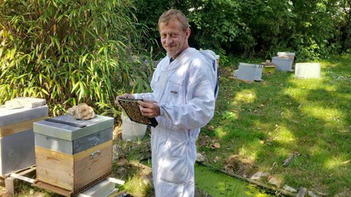 pszczelarz miodu konopnego