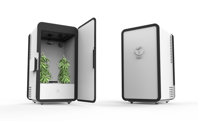 leaf-growbox
