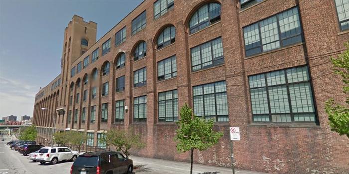 wildcat charter school w Bronxie