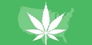 kolejne stany zalegalizują zioło