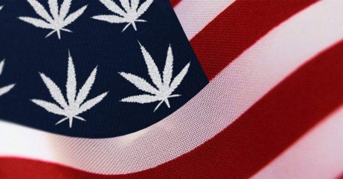 głosowanie nad legalizacją marihuany w USA