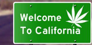 Legalizacja marihuany w Kalifornii