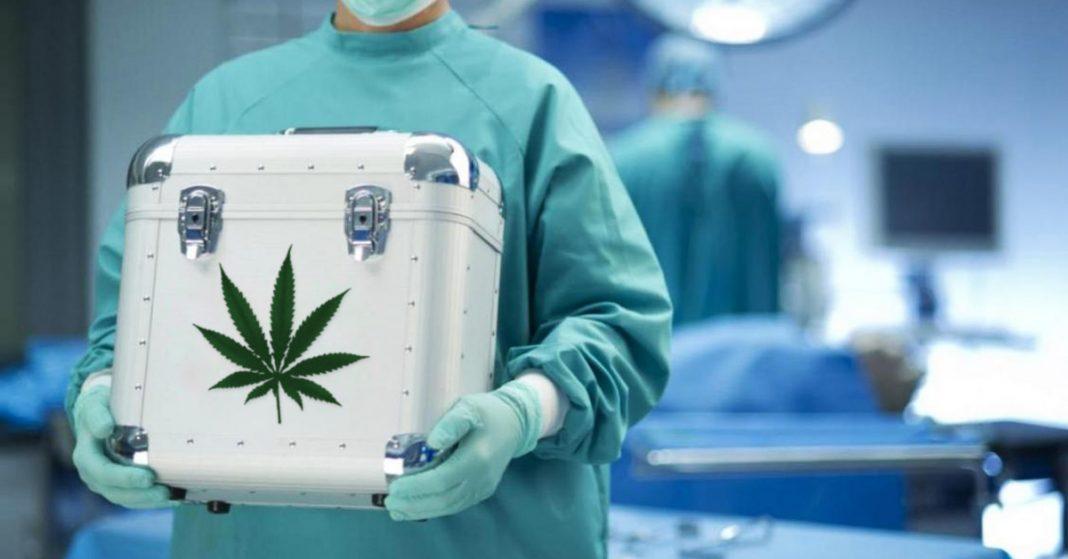 marihuana medyczna przeszczep