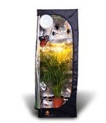 Średni zestaw growbox