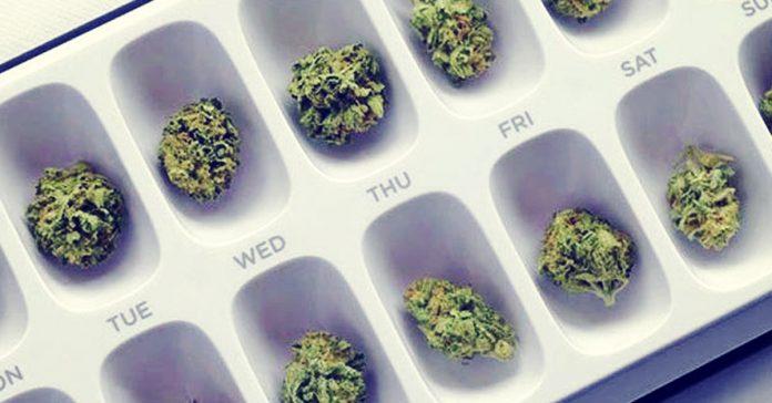 marihuana dawki