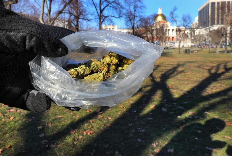Marihuana w Massachusetts