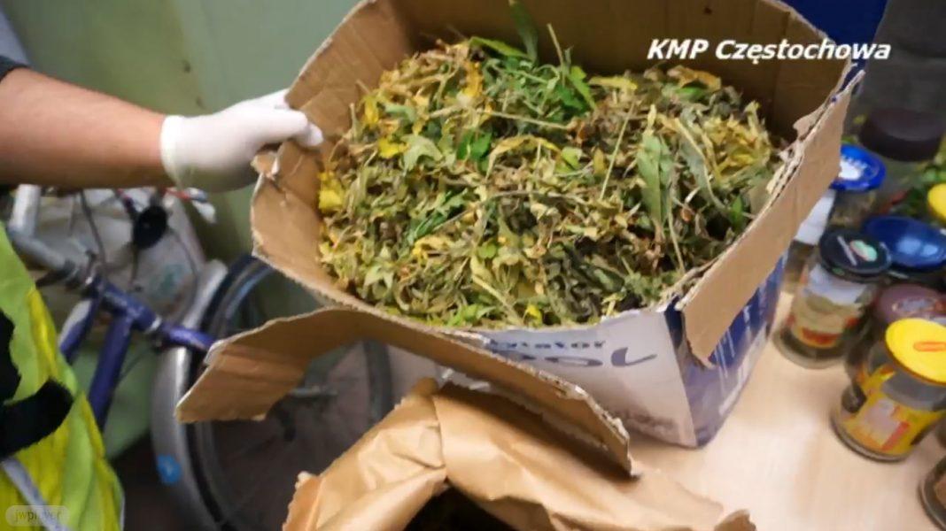 Miał 3,5 kg marihuany, ugryzł policjanta podczas ucieczki