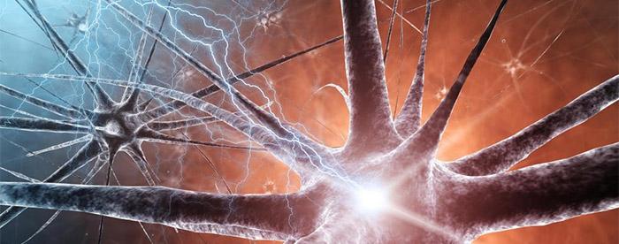 CBD pobudza szare komórki