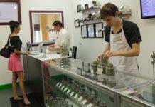 Praca w Niemczech przy marihuanie