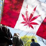 Legalizacja marihuany w Kanadzie