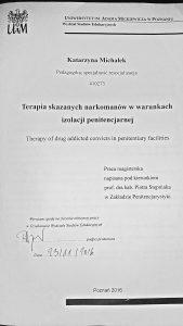 Terapia skazanych narkomanów w warunkach izolacji penitencjarnej - Katarzyna Michałek