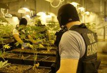 Dwupoziomowa plantacja marihuany pod Cieszynem