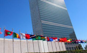 ONZ i WHO chcą legalizacji marihuany!