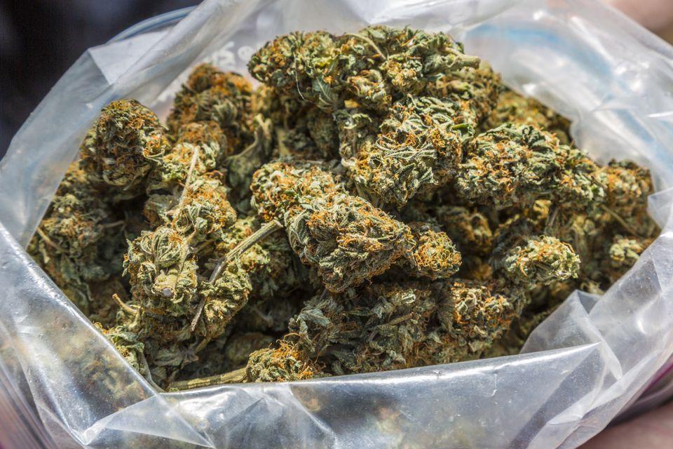 Medyczna marihuana od lekarza rodzinnego? Na katar jej nie dostaniesz