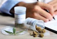 13.00 podan na refundacje leczenia medyczna marihuana w niemczech